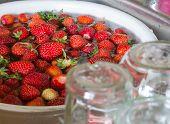 Strawberry Jam Cooking Preparation Strawberries Washing