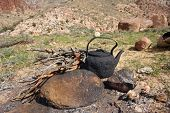 Arab bedouins making a tea in the wild