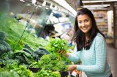foto of leafy  - Closeup portrait beautiful pretty young woman in sweater picking up choosing green leafy vegetables in grocery store - JPG