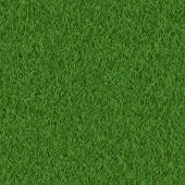 Seamless grass background of texture,  fresh green soccer turf