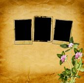 Old Vintage Frame For Photos And Bouquet Of Flowers Of Pink Clover On Shabby Paper Background