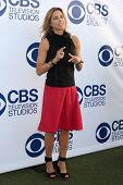 LOS ANGELES - MAY 19:  Tea Leoni at the CBS Summer Soiree at the London Hotel on May 19, 2014 in Wes