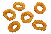 Deep fried calamari rings isolated on white