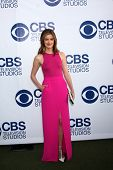 LOS ANGELES - MAY 19:  Anna Wood at the CBS Summer Soiree at the London Hotel on May 19, 2014 in Wes