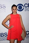LOS ANGELES - MAY 19:  Kelen Coleman at the CBS Summer Soiree at the London Hotel on May 19, 2014 in
