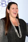 LOS ANGELES - MAY 19:  Camryn Manheim at the CBS Summer Soiree at the London Hotel on May 19, 2014 i
