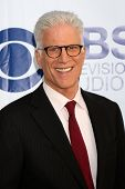LOS ANGELES - MAY 19:  Ted Danson at the CBS Summer Soiree at the London Hotel on May 19, 2014 in We
