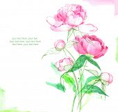 Painted watercolor card with peony and place for text