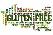 Gluten Free word cloud on white background