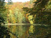 Beautiful Herbstimpression