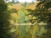 Beautiful fall Impression 2