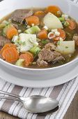 picture of spring lambs  - home made irish lamb stew with carrot potato and spring onion in a bowl - JPG