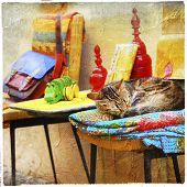 charming street' pictures - cat with old toys