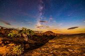 Milky Way Over The Canyon Single Tree Lid By Rising Moon Light