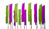 Purple And Green Flags
