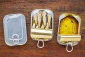 wild caught brisling sardines canned in extra virgin olive oil - three cans on a rustic wood