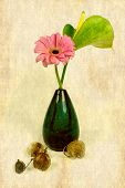 picture of adornment  - a pink gerbera with adorn physalis in a vase - JPG