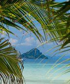Exotic Paradise Idyllic Coast