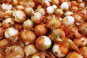 heap of raw onion on market as background