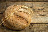 Bakery Background. Whole Wheat Bread