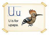 Poster of an alphabet U