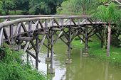 interesting wooden bridge in park of Curitiba