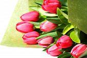 Beautiful Bunch Of Pink Tulips