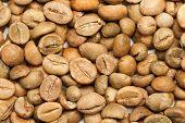 Dry green coffee beans (Coffea arabica)