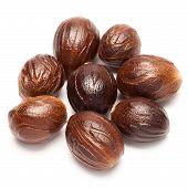 Nutmeg (jaifal india ) Myristica fragrans