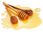 Wooden sticks in the honey puddle on a white background. Clipping path.