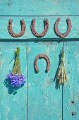 Horseshoe , Wheat Bunch And Cornflower On Old Wodoen Farm Door