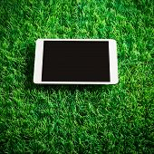 Tablet On Artificial Grass