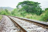 Railway Track In A Green Forest.