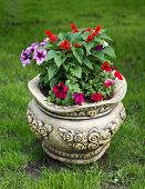 stock photo of flower pot  - Beautiful flower pot decorating lawn with flowers - JPG