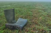 stock photo of boot  - Rain boots rubber boots standing on a wet meadow - JPG