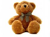 foto of teddy bear  - A brown teddy bear isolated - JPG