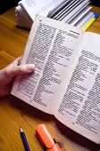 Woman's hand holding up dictionary