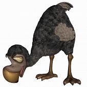 Toon Dodo
