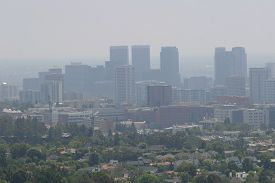 picture of polluted  - View on the air pollution of Downtown LA on a sunny day  - JPG