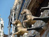 Venice - The Basilica of St Mark's