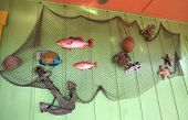 Fish Net Arrangement