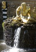 foto of samson  - Fountain in Petrodvorets  - JPG