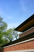 Frank Lloyd Wright'S Robie House, Lines