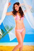 Vogue style photo of sensual girl in bikini posing in summerhouse on beach.