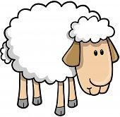 Sheep Lamb Vector Illustration
