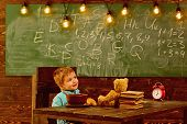School Lunch. Little Child Have School Lunch. Boy Enjoy School Lunch. School Lunch For Child Health. poster