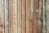 Placas de madeira