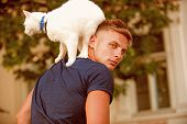 It Is Difficult To Obtain The Friendship Of A Cat. Happy Cat Owner With Muscular Look. Muscular Man  poster