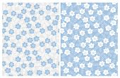 Hand Drawn Cute Floral Vector Patterns. Gray And Blue Backgrounds. Pastel Blue, Grey And White Color poster