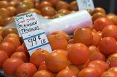 stock photo of tangelo  - Full frame detail of Tangelos at the Farmers Market - JPG